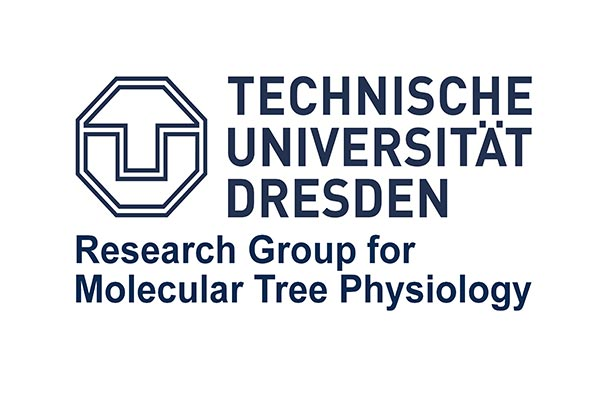RESEARCH GROUP FOR MOLECULAR TREE PHYSIOLOGY