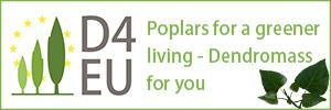D4EU Logo and Slogan