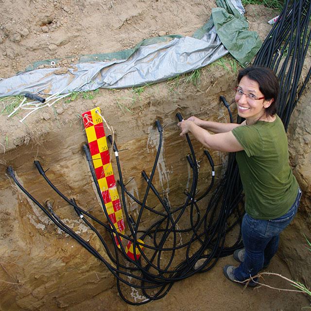 Researcher in Poplar plantation working on water measurement